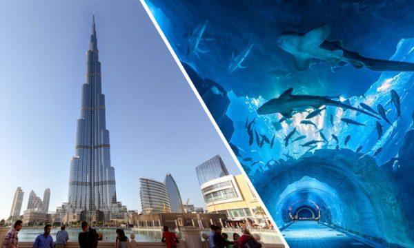 Dubai Aquarium Combo Entrance tour