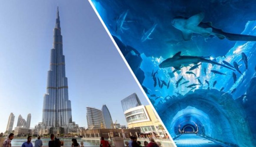 Dubai Aquarium Combo Entrance tour