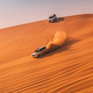 Premium desert safari