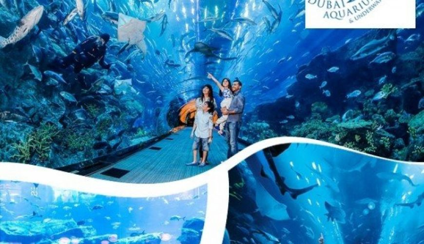 dubai aquarium and under zoo